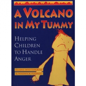 A Volcano in my Tummy Therese Hoyle